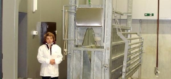 Klaonice Jerković obnovile pogone za klanje papkara i kopitara