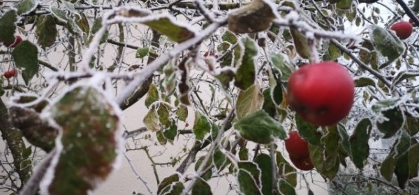 Maglovito i prohladno jutro u Gackoj