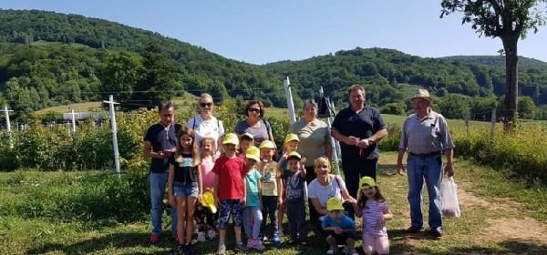 Djeca iz brinjskog vrtića posjetili OPG Rajačić i kušali maline