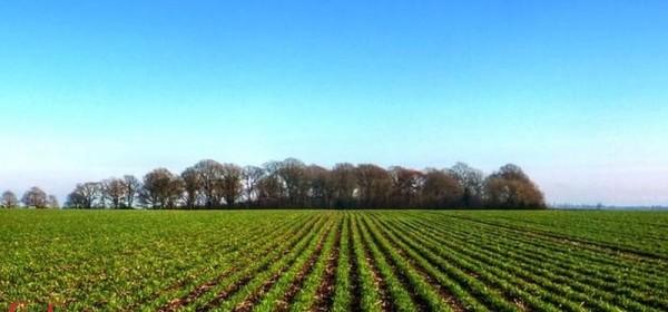 Netočno je da Hrvatska vraća 3 milijardi kuna za ekološku proizvodnju