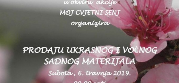 Akcija prodaje ukrasnog i voćnog sadnog materijala, Senj, Pavlinski trg, 6. travnja 2019.