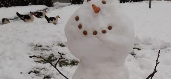 Nije problem Olafu skoknuti iz Gospića!