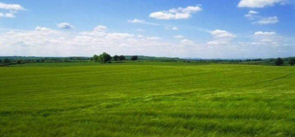 Održana video-konferencija projekta Strateške transformacije poljoprivrede i ruralnog prostora